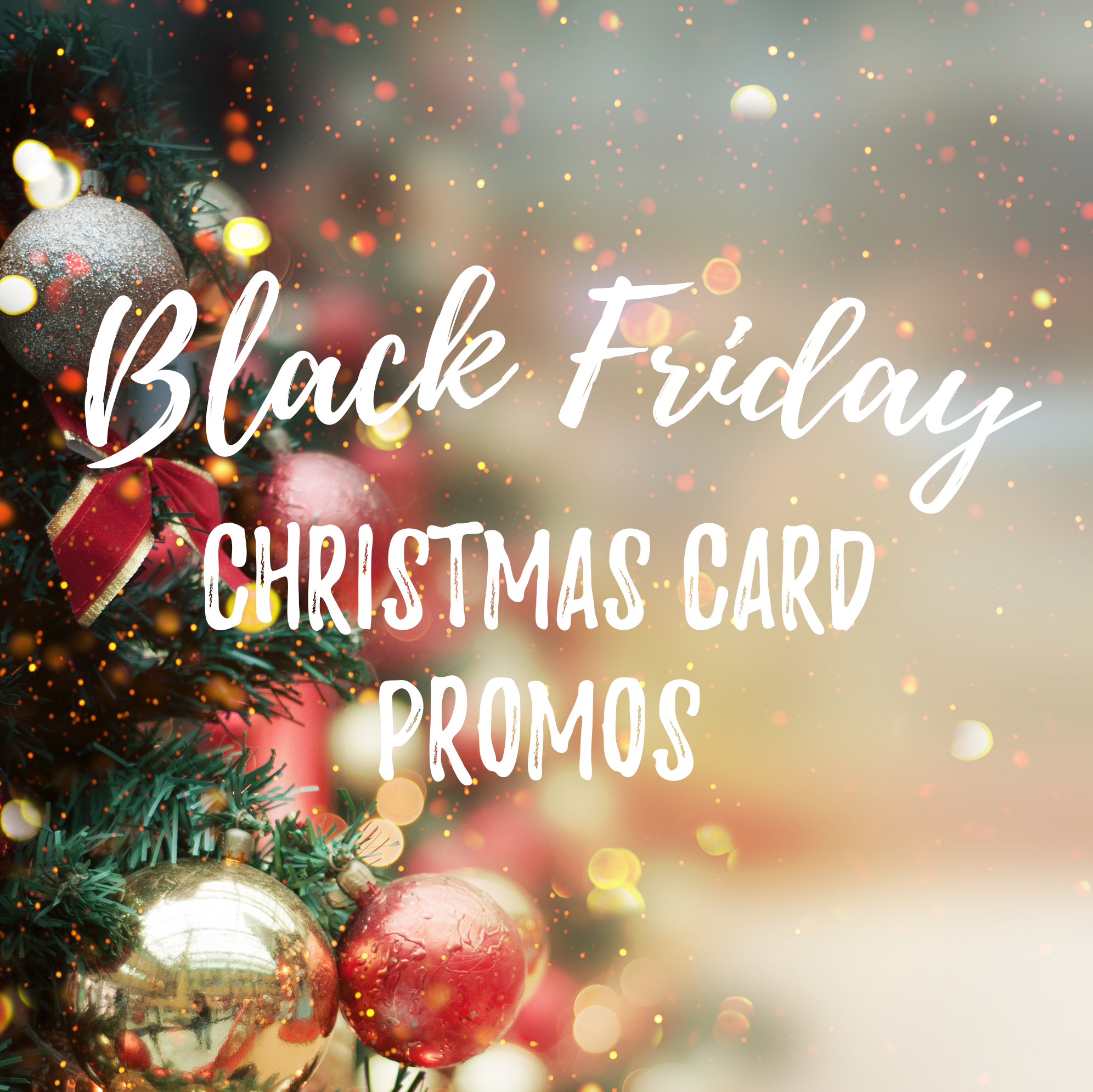 Black Friday Christmas Card Sales Bumblebee Photography Destin